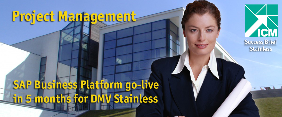 SAP Business Platform go-live in 5 months for DMV Stainless.